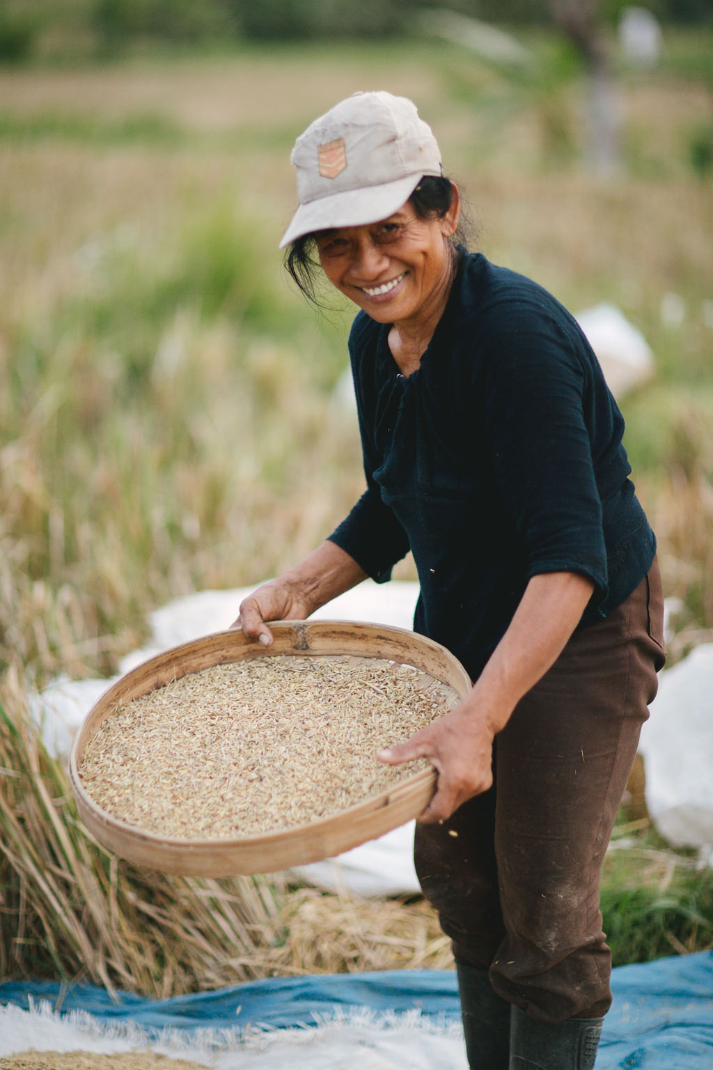 Rice field working woman